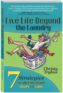 Laundry-WebCover1-205x300